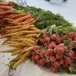 Farmers Market Verdura 3