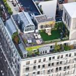 Tetto di New York con giardino