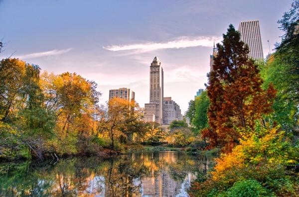 Central Park - NewYork
