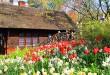 Shakespeare Garden