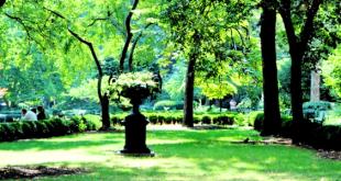 Giardini Segreti a Manhattan